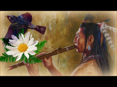 1 Час - Флейта североамериканских индейцев и звуки леса / Relaxing Native Flute & Birds Singing