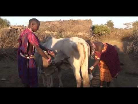 Massai Village in Kenya