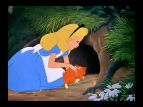 Falling Down The Rabbit Hole Wallpaper Stuck Clip Alice In Wonderland Eng Youtube