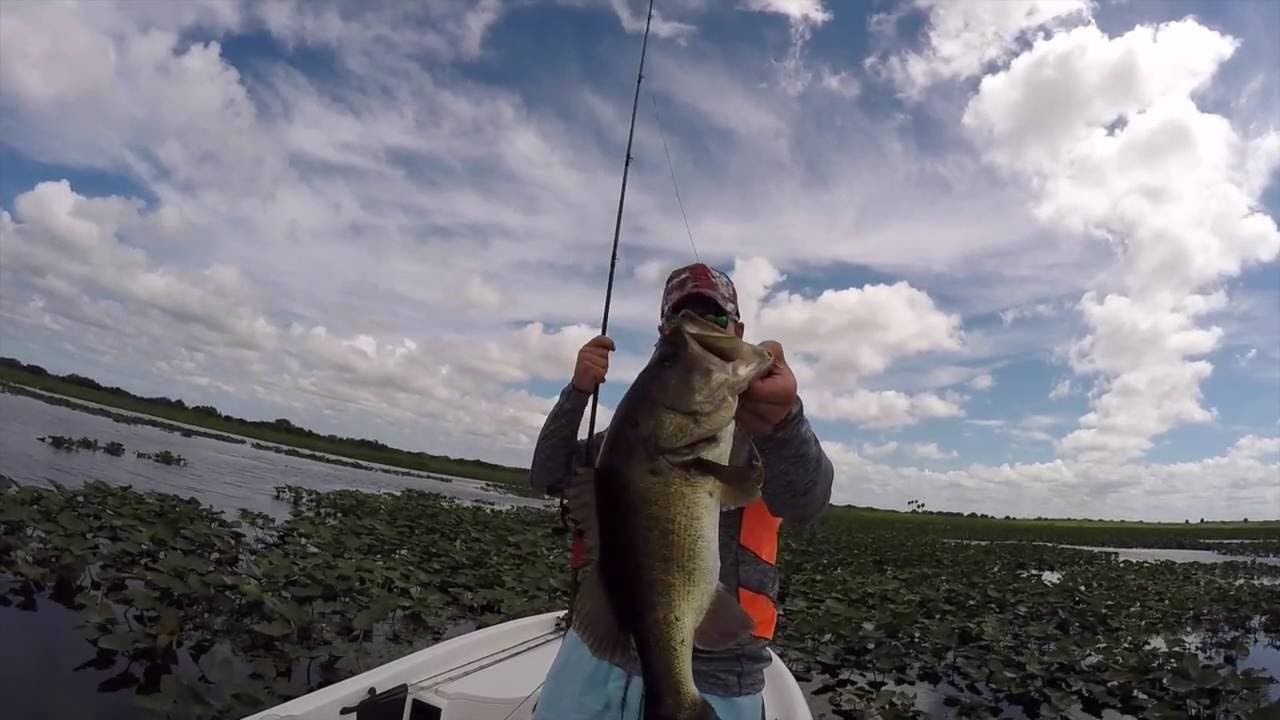 Lake kissimmee bass fishing youtube for Youtube bass fishing