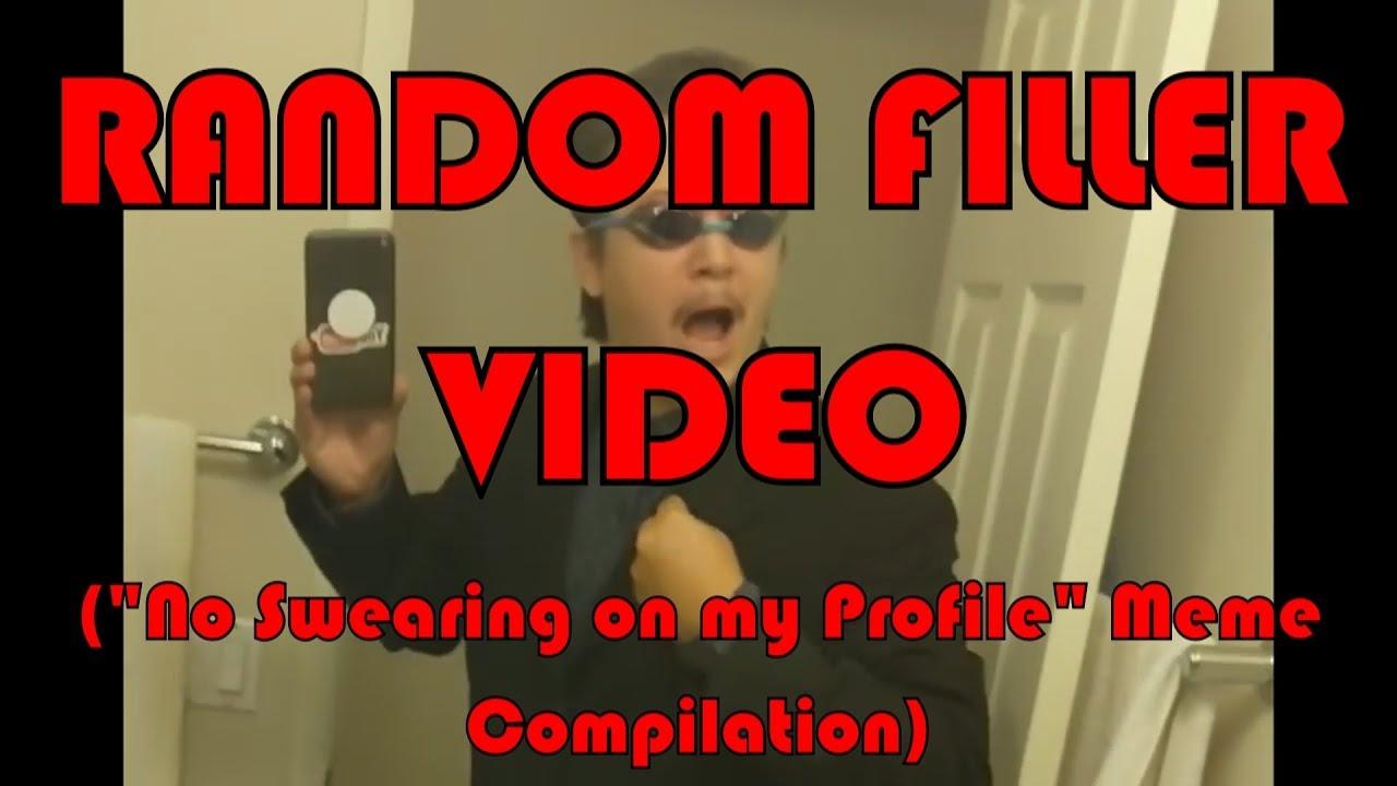 No Swearing On My Profile Meme Compilation Random Filler Video