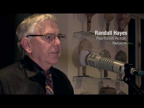 Climate Round Table: Randall Hayes - Rainforest Action Network