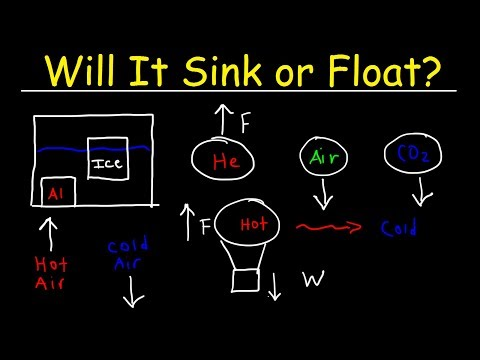 Will It Sink Or Float?