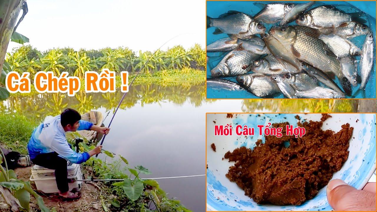 Câu Đài Nghiệp Dư ➣ Cá Chép, Cá Diếc Đi Ăn Lại Rồi Cả Nhà Ơi