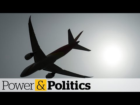 Airlines looking for loans to get through COVID-19 crisis | Power & Politics