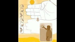 ★ Забыл часы дома? Не беда, время можно определить, используя пальцы рук! Ценные знания для туриста