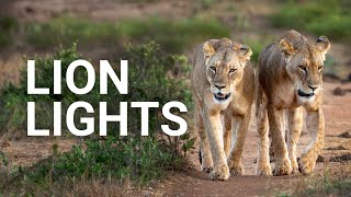 Lion Lights - Solar Solutions in Kenya