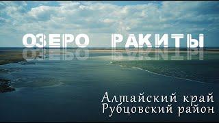 озеро Ракиты Рубцовский район природа и рыбалка 4К