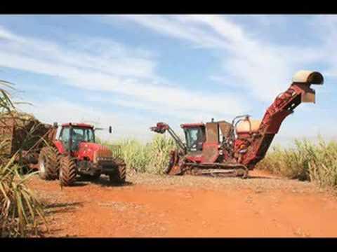 Sugarcane ethanol boosts Brazilian industries, exports grow