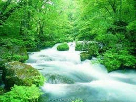relaxation bruit de la nature