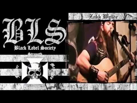 Black Label Society - Stillborn (acoustic version)