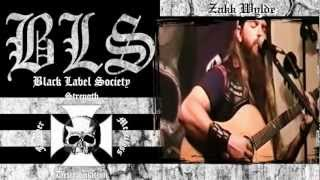 Black Label Society - Stillborn (acoustic version)