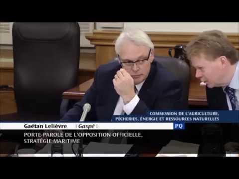 Projet de loi sur les hydrocarbures : Les Québécois ne sont pas des peureux!