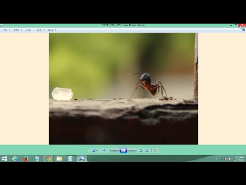 Fix Windows Photo Viewer Yellow Background Error on Windows 7, 8, 8.1