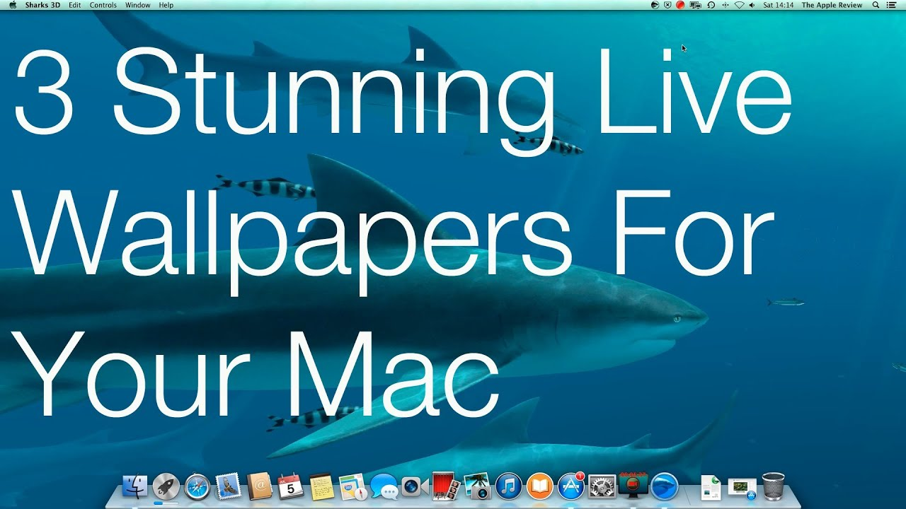live wallpaper for mac  3 Stunning Live Wallpapers For Your Mac - YouTube