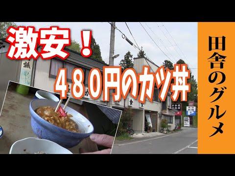 田舎のグルメ!コスパ最強480円のカツ丼