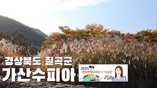 가을맞이 경북으로 단풍놀이 가즈아!!!!_칠곡편