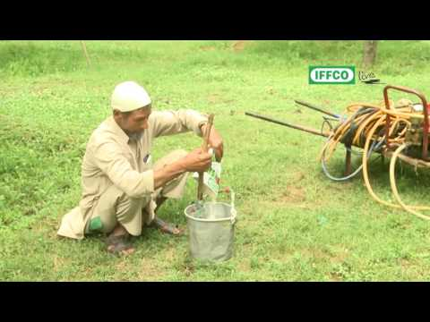 How To Use Water Soluble Fertilisers Effectively