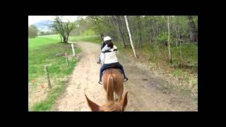 North Conway Nh - Farm By The River B&b Horseback Riding.wmv