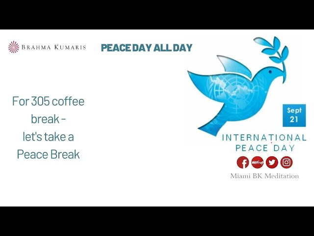 3:05pm coffee break meditation - Peace Day All Day