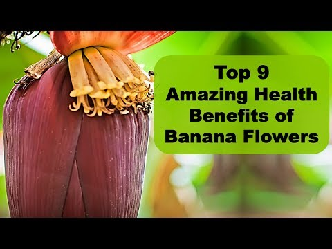 Top 9 Amazing Health Benefits of Banana Flowers   Banana Heart Benefits