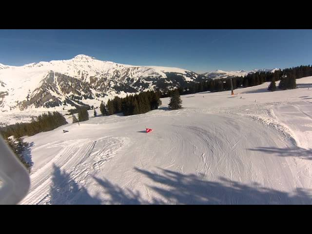 Audi Ski Cross Park Silleren