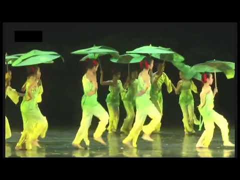 舞蹈之乡~广东省第四届少儿舞蹈大赛D1A~011少儿群舞~蕉林戏雨