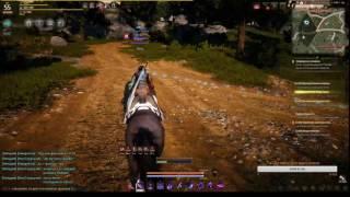 Black Desert Online - Охота на РБ за Тёмного рыцаря