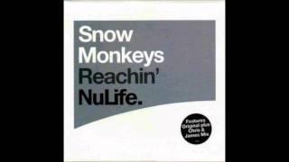 SNOW MONKEY - REACHIN