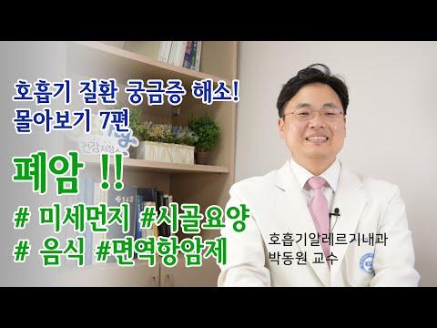 [호흡기 질환 궁금증 해소 몰아보기 7편] 폐암과 미세먼지, 폐암환자 요양, 폐암에 좋은 음식, 면역항암제치료
