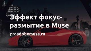 Эффект фокус размытие в Adobe Muse