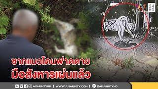 ทุบโต๊ะข่าว : ภาพชัดมัดชายฟาดแมวตาย อึ้งซากเกลื่อนบ้านร้าง เพื่อนบ้านเผยหอบผ้าเผ่นคาดหนี 25/02/61