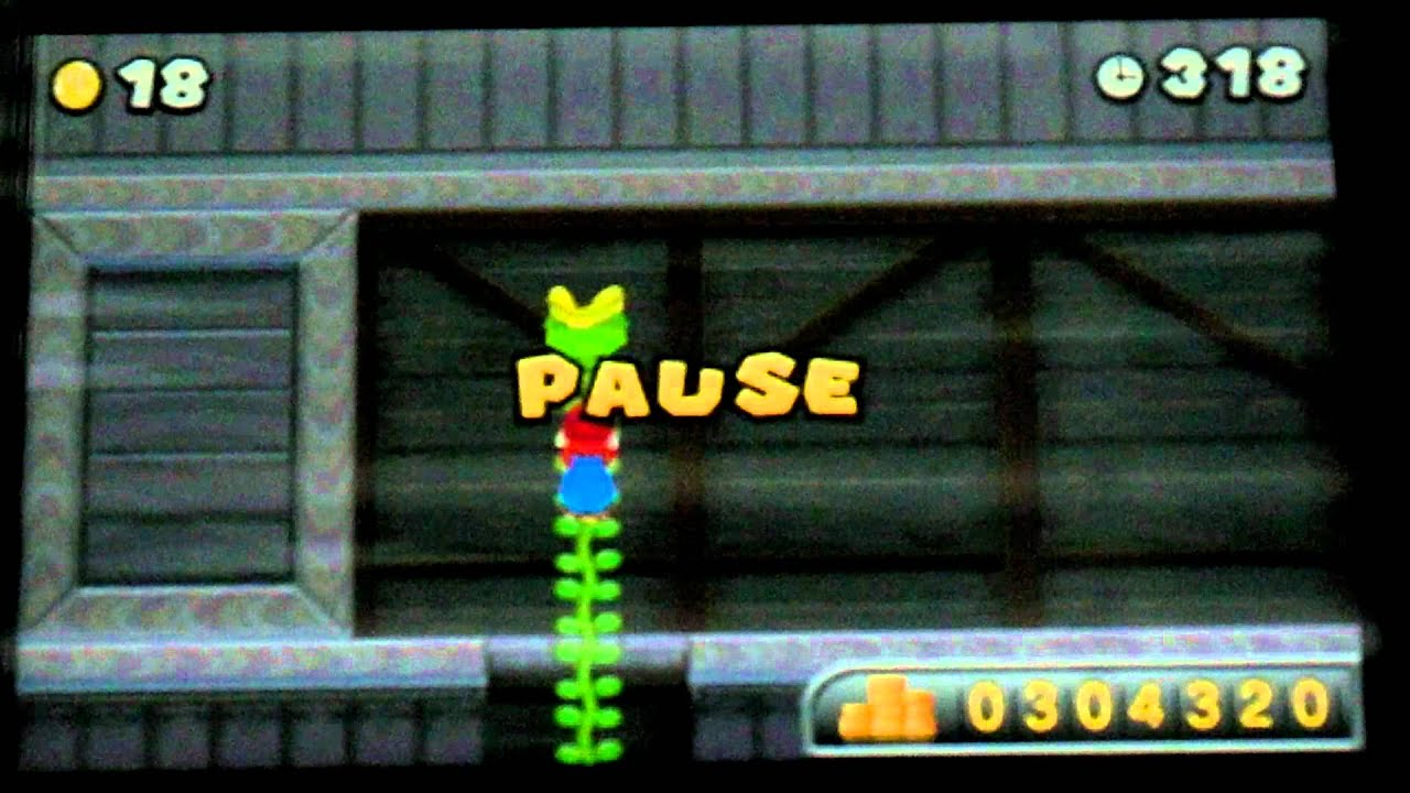 Super Mario Bros 2 Ds Flower World Secret Exits | Kayaflower co