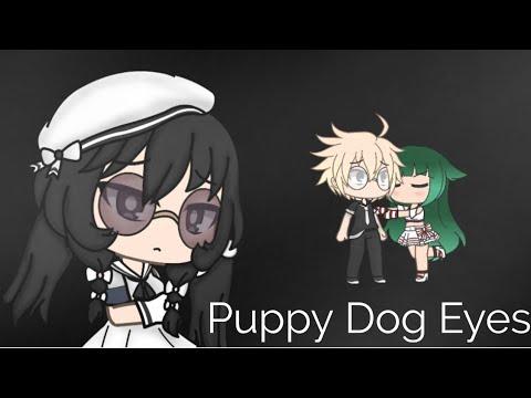 OLLIE MN - Puppy Dog Eyes