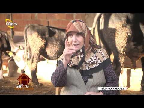 AHIRIM ŞAHANE/BİGA-ÇANAKKALE