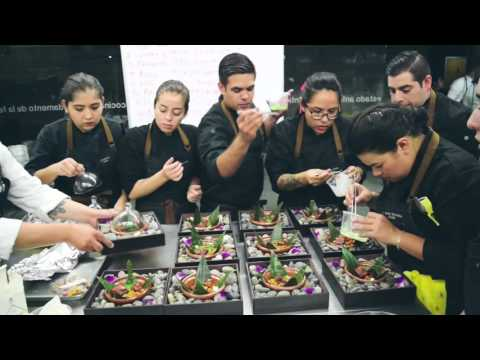 Culinary Art School Tijuana
