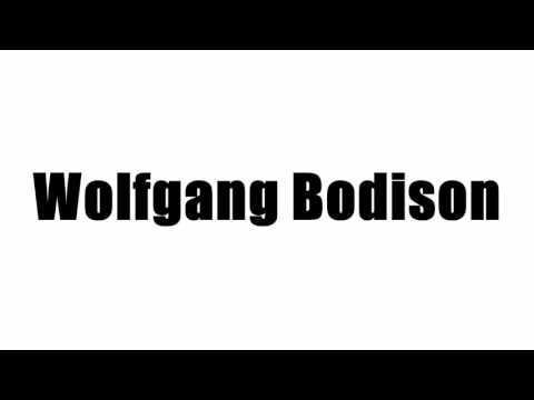 Wolfgang Bodison