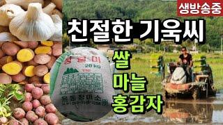 🇰🇷애국농장을 찾아서ᆢ🇰🇷성주 김기욱동지님/쌀.마늘.홍감자