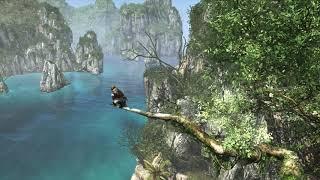 Assassin's Creed IV  Black Flag - THE JACKDAW GLITCH!