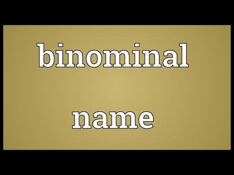 Header of binominal