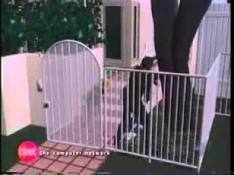 OJ Simpson - Video of  the Murder
