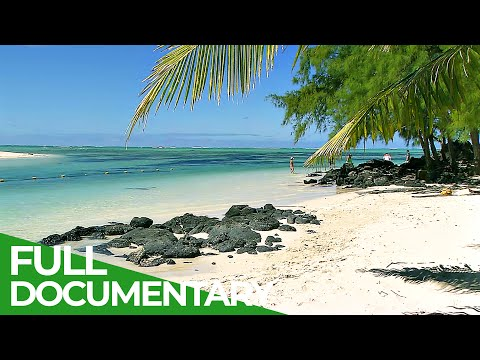 Mauritius - Tropical Paradise in the Indian Ocean | Free Documentary Nature