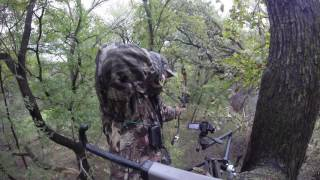 Video Bowhunting A Mature North Texas Whitetail download MP3, 3GP, MP4, WEBM, AVI, FLV Oktober 2018