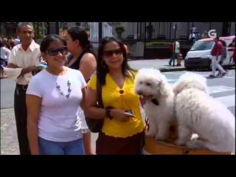 Galegos no mundo - Programa 36: Costa Rica