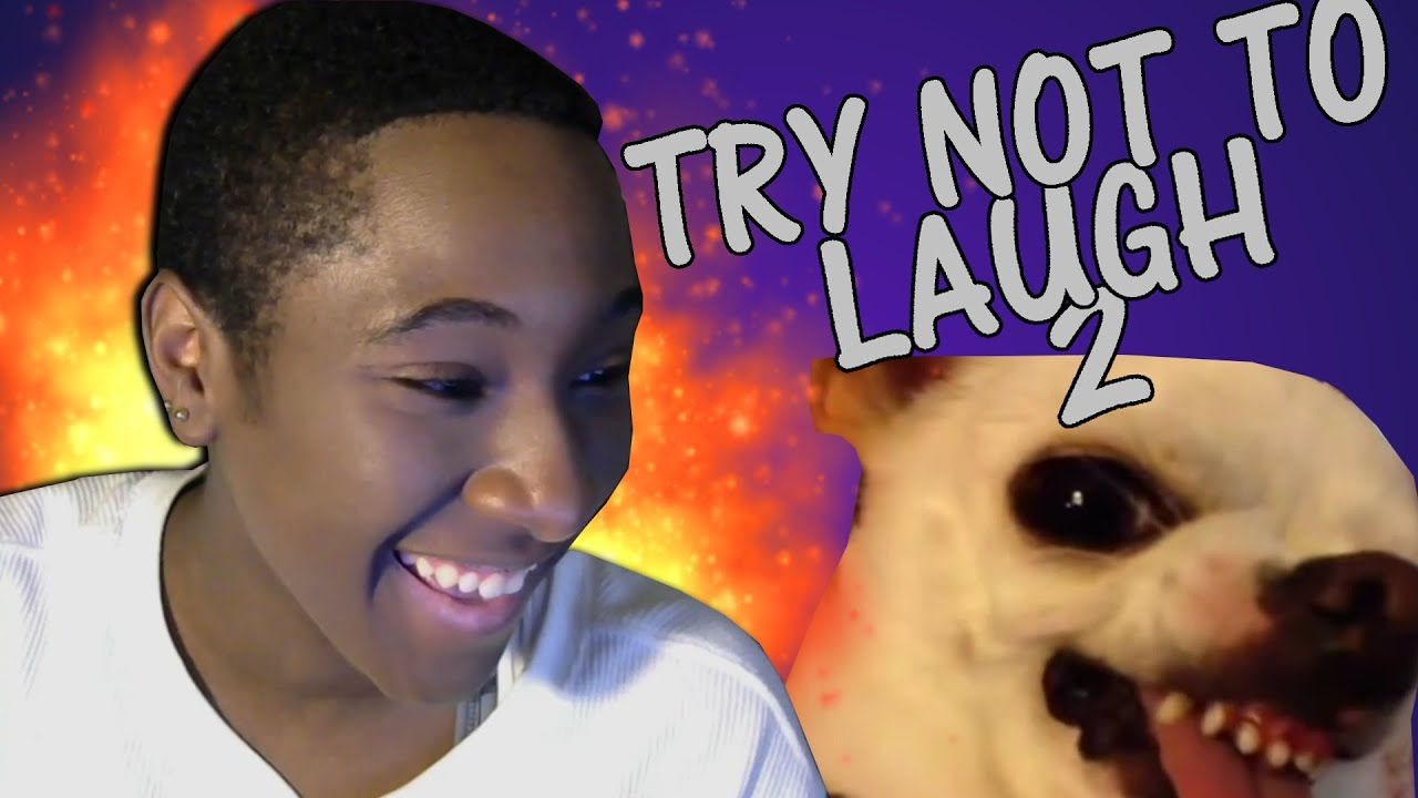 Try Not Laugh 8 Bitgaming