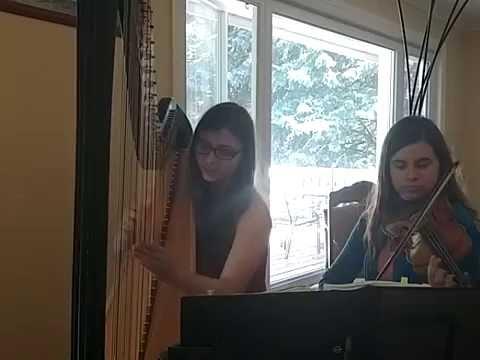 Vote No on : harp Violin Cover)