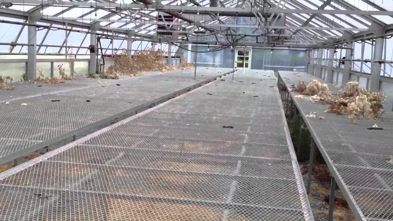 Rolling greenhouse benches tables - YouTube