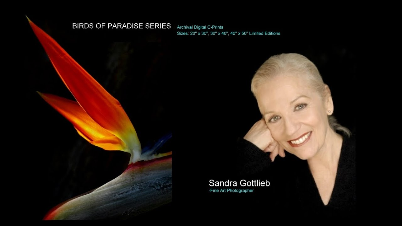 Sandra Gottlieb - BIRDS OF PARADISE