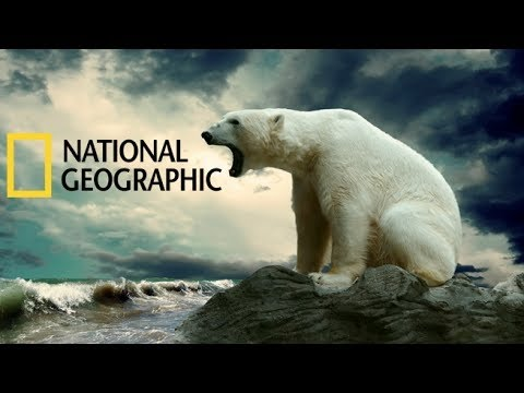 National Geographic Animals 2015 Deep Oceans Under The Antarctic Ice Full Documentary HD