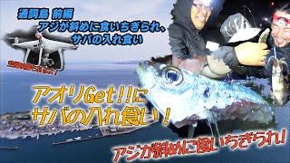熊本県天草市五和町通詞島にアオリイカとジグで真鯛狙いに行きました。...